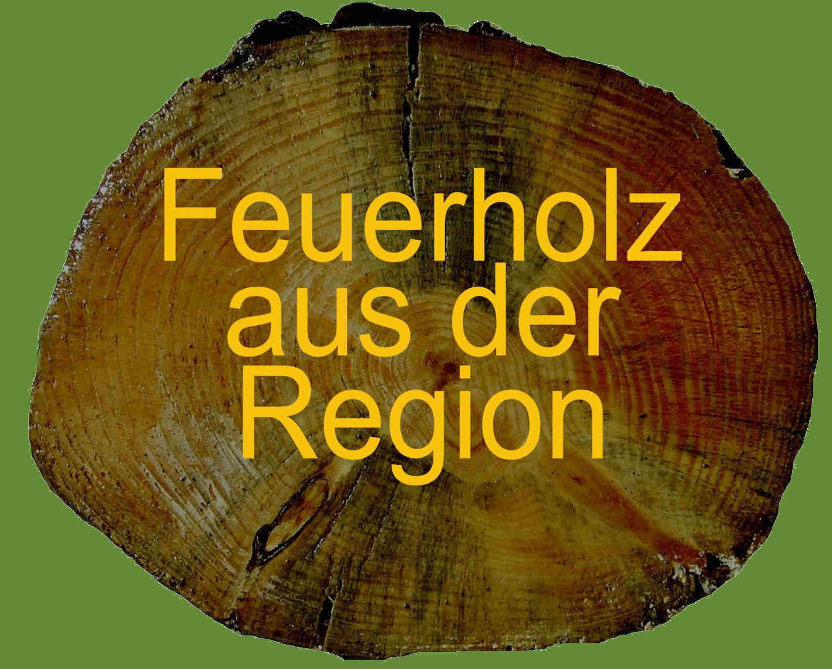 Feuerholz in OHZ Logo